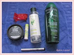 produits termines fevrier 2015